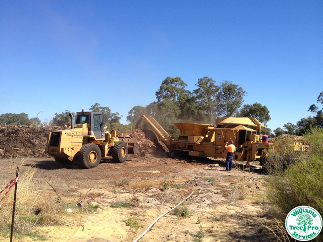 Land Clearing by Williams Tree Pro Services
