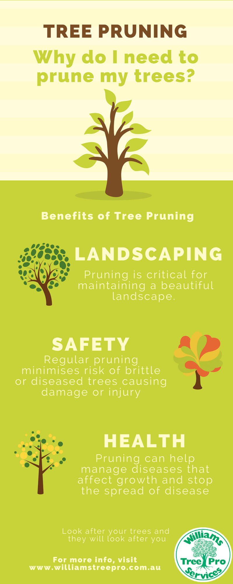 tree pruning infographic - williams tree pro services - benefits of tree pruning